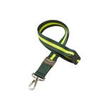 Aston Martin Motorsport  Team Lanyard Green